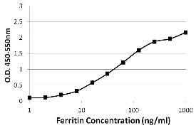 Ferritin Antibody (MA5-14733)