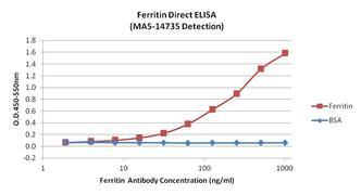 Ferritin Antibody (MA5-14735)