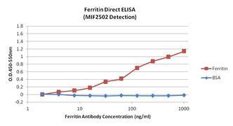 Ferritin Antibody (MIF2502)