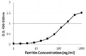 Ferritin Antibody (MIF2503)