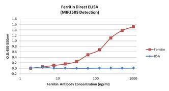 Ferritin Antibody (MIF2505)