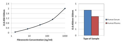 Fibronectin Antibody (MIF2601)