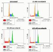 Cell cycle Data generated using the Tali® Image-Based Cytometer