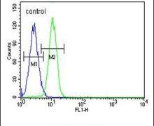 G6PC Antibody (PA5-25148)