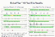 Data Comparison of a bone sample amplified with the Identifiler® Plus and GlobalFiler® kits