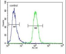 GNL3L Antibody (PA5-24522)