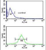 GPR17 Antibody (PA5-26851)