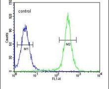 GSDMA Antibody (PA5-24813)