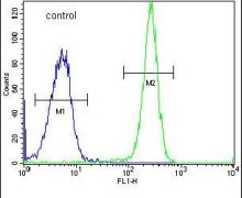 HYAL2 Antibody (PA5-24223)