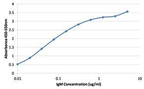 Human IgM Secondary Antibody (MA5-14729)
