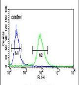 IDH3G Antibody (PA5-26798)