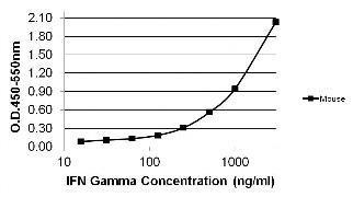 IFN gamma Antibody (MM700)