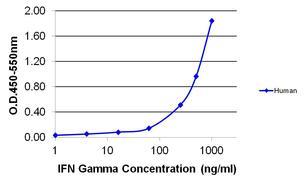IFN gamma Antibody (MM700B)