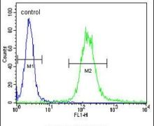 IGF1R alpha Antibody (PA5-24610)