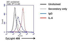 IL-6 Antibody (M620)