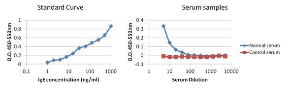 Human IgE Secondary Antibody (MA5-14727)