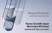 High-solubility KLH carrier protein