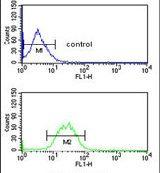 KCNH7 Antibody (PA5-26177)