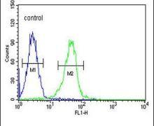 KCNJ6 Antibody (PA5-25747)