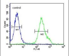 KCTD21 Antibody (PA5-25323)