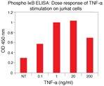 IkappaBalpha [pS32] phosphoELISA™.