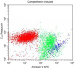 Induced Jurkat cells stained with LIVE⁄DEAD® Cell Vitality Assay Kit analyzed by flow cytometry.