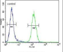 LCN10 Antibody (PA5-24087)