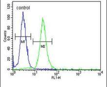 LMBR1L Antibody (PA5-26795)