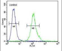 MS4A4A Antibody (PA5-24303)