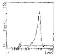 CD90 Antibody (MA1-21469)