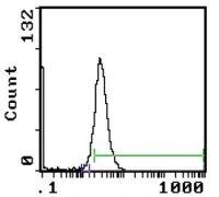 SIRP alpha Antibody (MA1-22858)