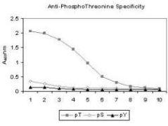 Phosphothreonine Antibody (MA1-91728)