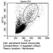 CD31 Antibody (MA3100)