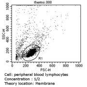 CD4 Antibody (MA5-12259)