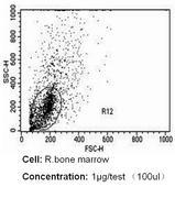 CD235a Antibody (MA5-12484)