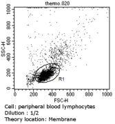 CD23 Antibody (MA5-14572)