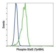 Phospho-STAT5 alpha (Tyr694) Antibody (MA5-14822)
