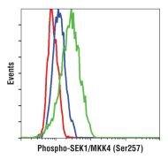 Phospho-SEK1 (Ser257) Antibody (MA5-14826)