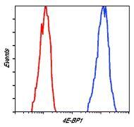 4E-BP1 Antibody (MA5-15005)