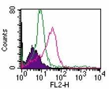 TLR2 Antibody (MA5-16204)