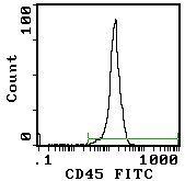CD45 Antibody (MA5-17422)
