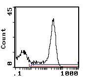 RT1.D Antibody (MA5-17439)