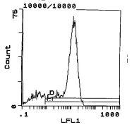 CD45RC Antibody (MA5-17460)