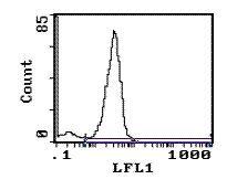 CD28 Antibody (MA5-17471)