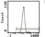 CD26 Antibody (MA5-17549)