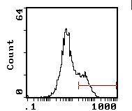 I-Ab Antibody (MA5-17760)