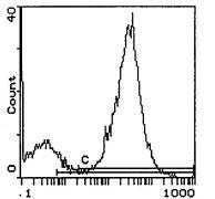 I-Ek Antibody (MA5-17763)