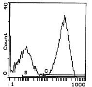 I-Ap Antibody (MA5-17769)