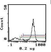 CD11b Antibody (MA5-17858)
