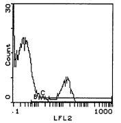 NK1.1 Antibody (MA5-17978)